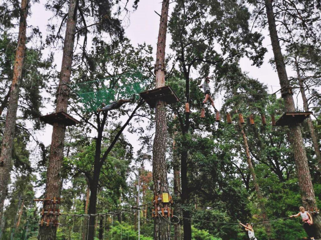 Мужской курс Фундамент_лазанье по деревьям